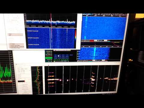 RTL ms detection