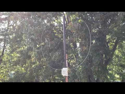 First hour battle of the antennas W6LVP loop VS MLA 30 loop test