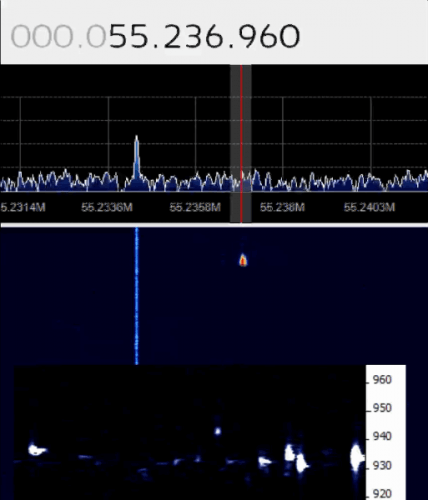 Live meteor detection stream from livemeteors.com
